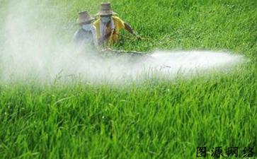 农药产品防伪标签如何防伪假冒产品流入市场