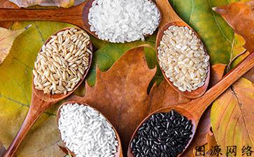 简单又好用的技术,农产品溯源管理系统