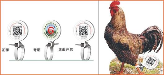 家禽溯源吊牌防伪标签,消除食品安全隐患