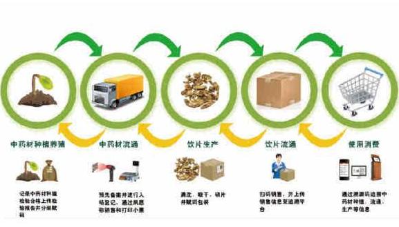 建立中药材生产全过程品质可溯源系统体系