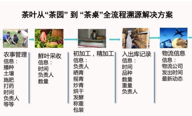茶叶加工流程溯源系统解决方案