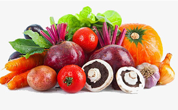 果蔬追溯管理系统具有哪些功能优势?