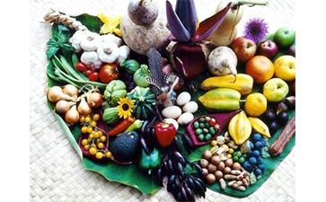 解析农产品溯源系统的功能特点
